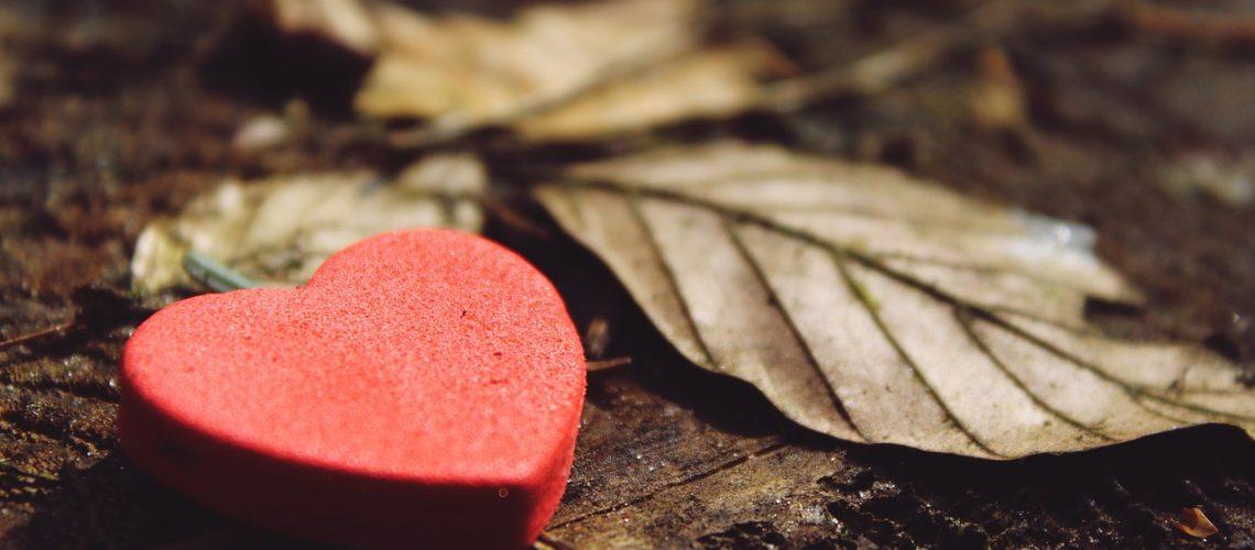 heart, love, deco
